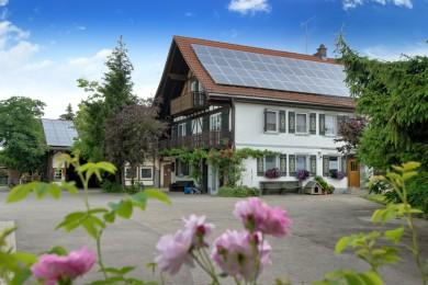 obsthof bernhard in friedrichshafen. Black Bedroom Furniture Sets. Home Design Ideas