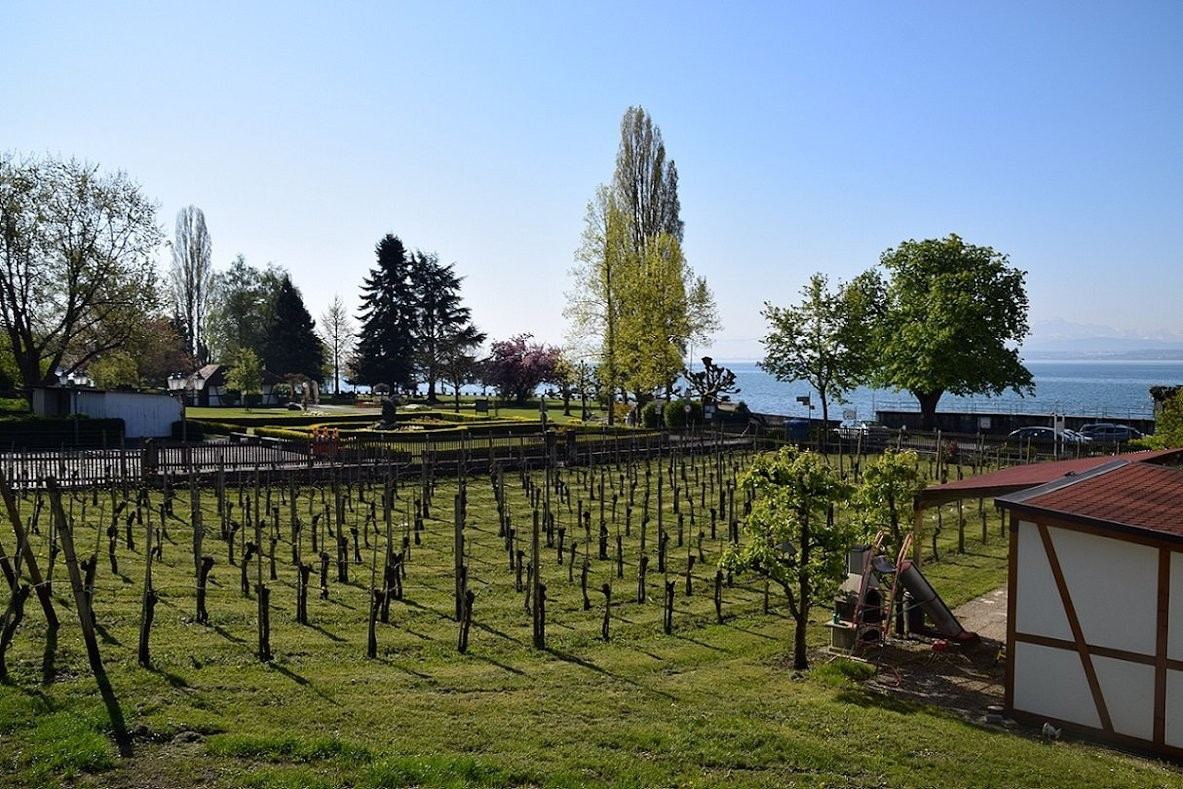 Ferienhof Mecking - pension am bodensee